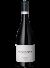 2019 Lemberger ✯ trocken Weinfactum Bad Cannstatt