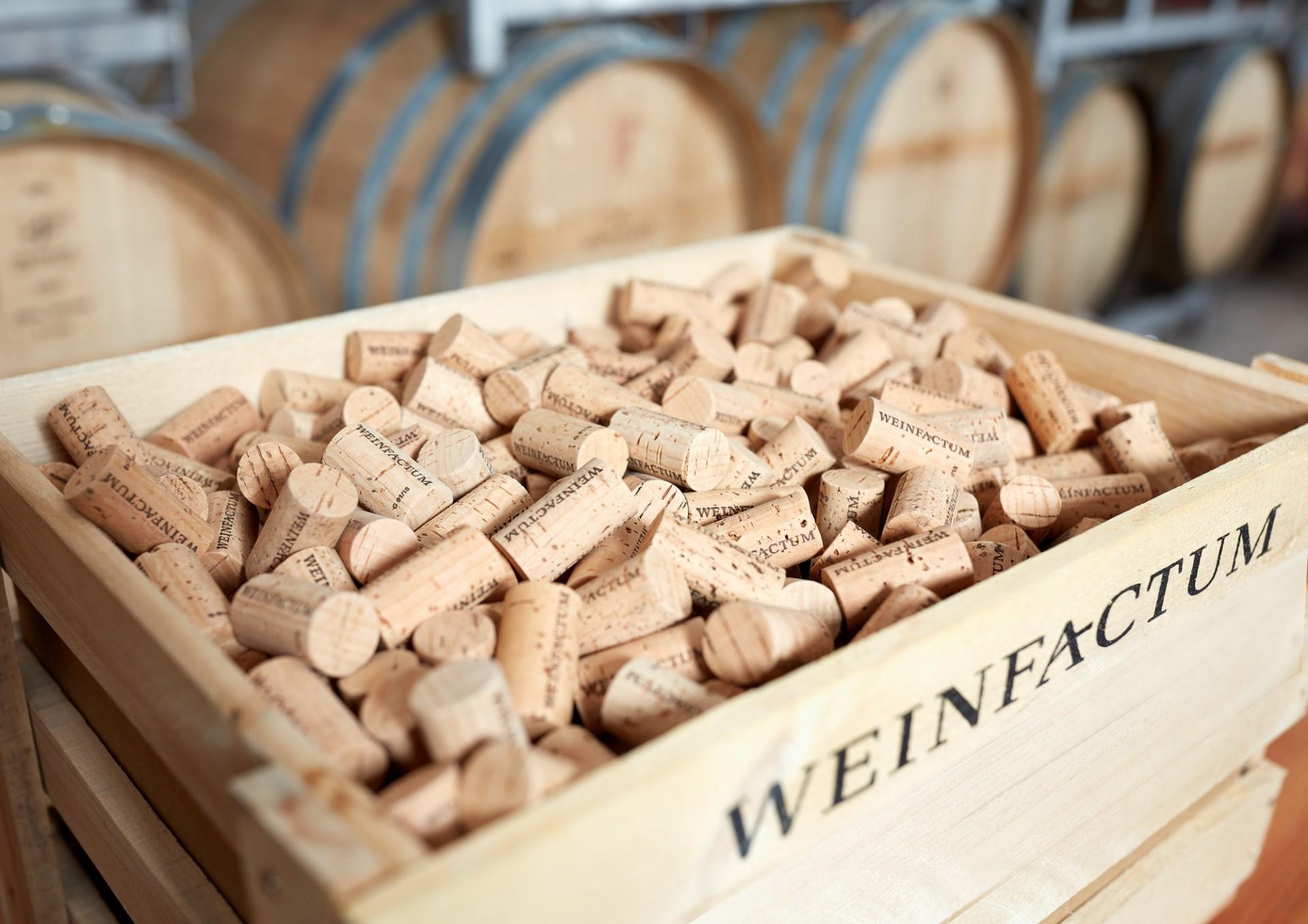 Weinfactum- Edle Weine aus Bad-Cannstatt